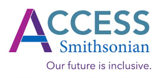 Inclusive Digital Interactives (2020) logo